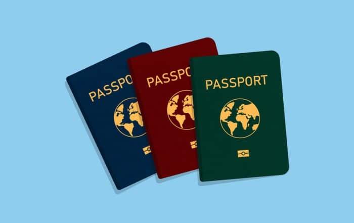 Pasaport Vektör Grafikleri