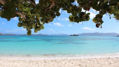 St. Kitts Portfolio